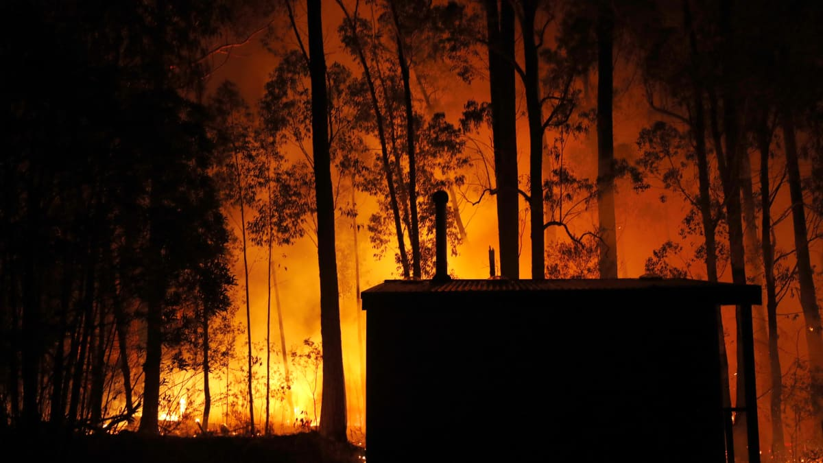 Australia Wildfires Confront the Country with Extinction