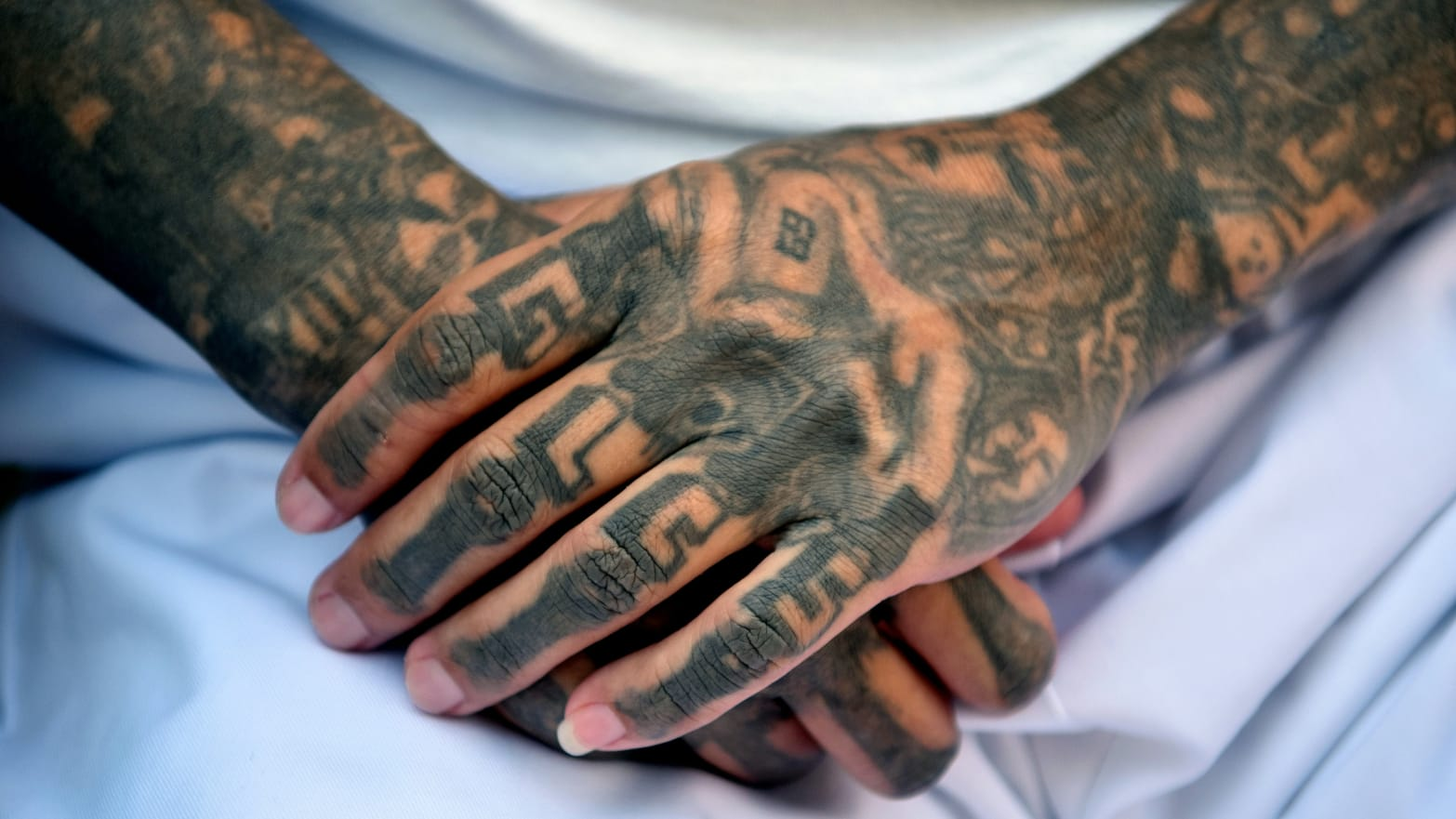 MS-13 Members Hacked Victims to Death With Machetes: Prosecutors