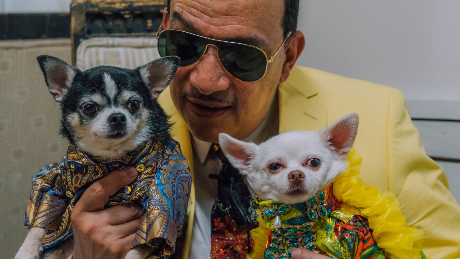 The Top Dogs of New York Fashion Week, In Anthony Rubio's Stunning 'Canine Couture'