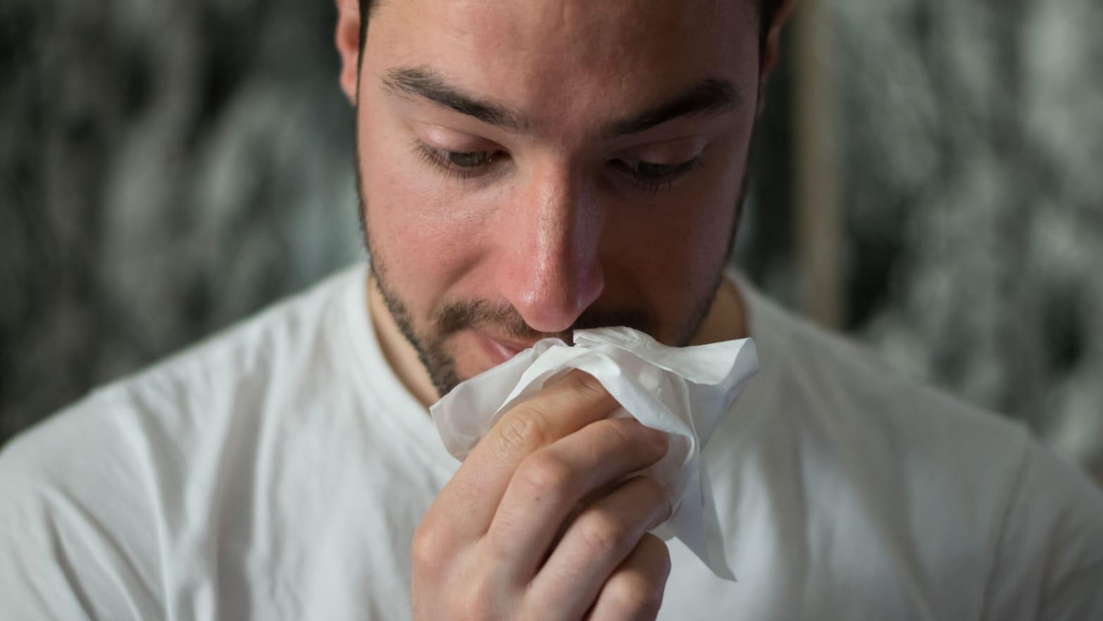 How to survive allergy season