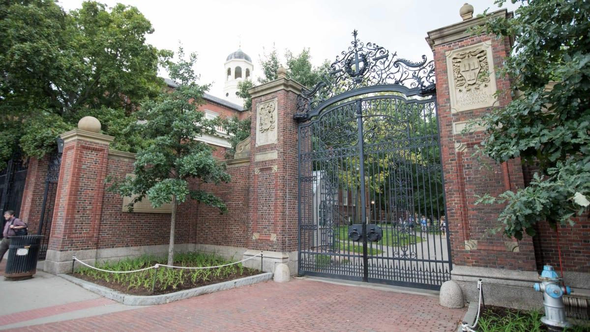 Bell Hooks and Angela Davis Join Fight Between Beloved Latina Scholar and Harvard University
