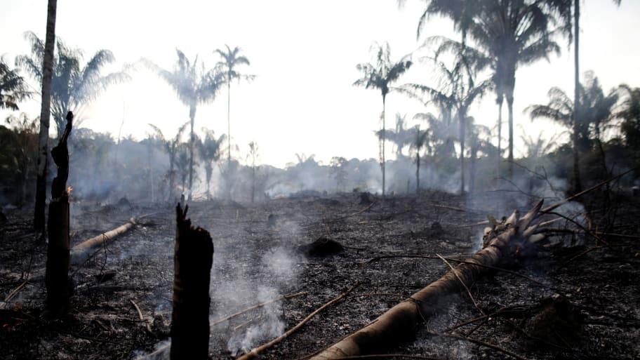 Brazil's Jair Bolsonaro Accuses Emmanuel Macron of Using Amazon Fires for 'Personal Political Gains'