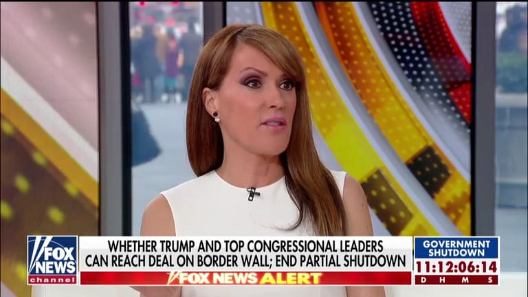 Fox Host Trump S Claim That Mexico Will Pay For Border Wall