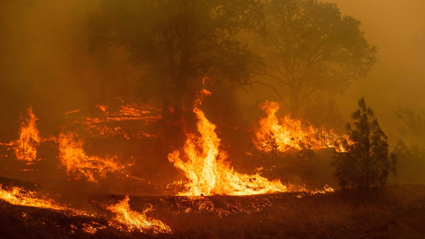 Man Charged With Arson in Connection to California Wildfire That's ...