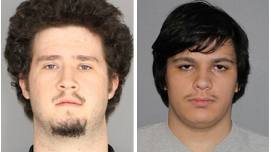 Brian Colaneri and Andrew Crysel, Accused of Plotting to Attack Muslim Community of Islamberg, Get Prison Time