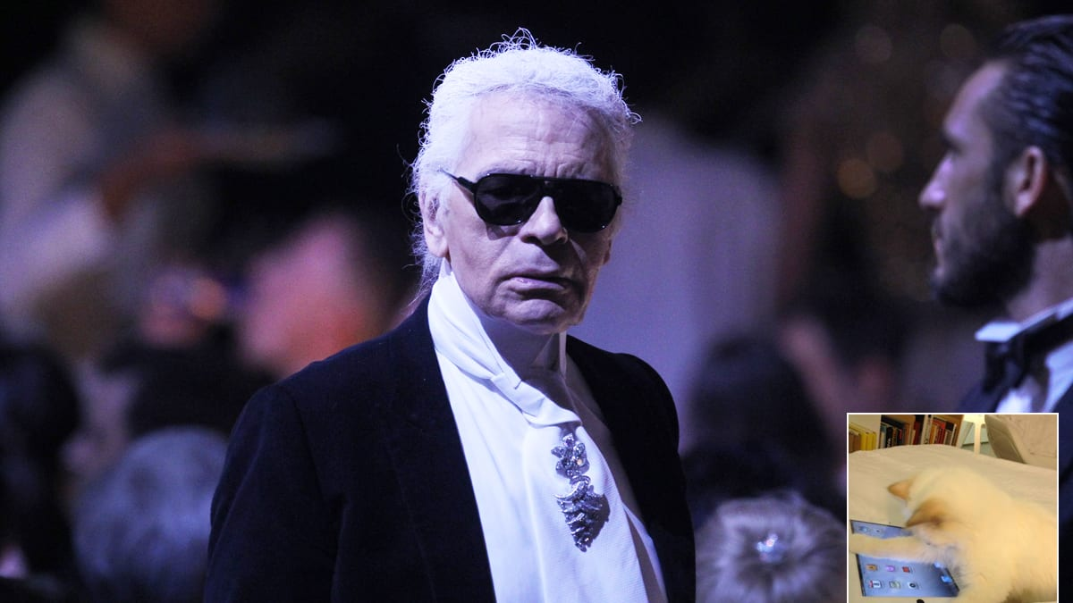 7 Facts To Know About Karl Lagerfelds Siamese Cat Choupette