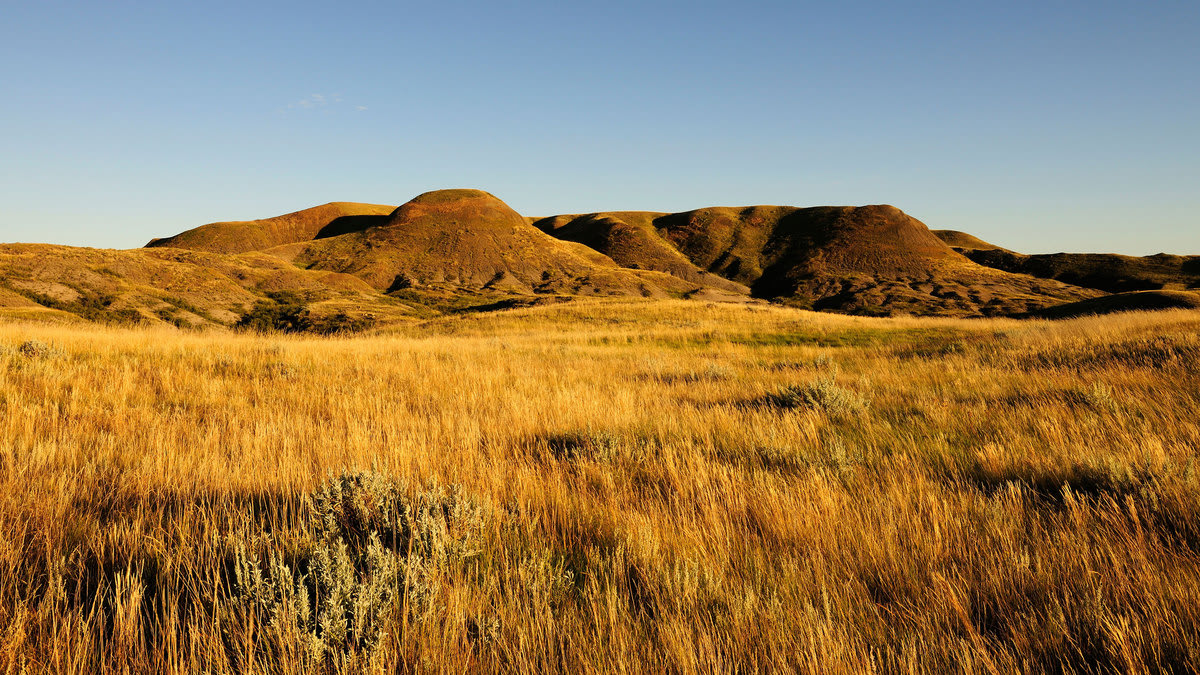 Grasslands National Park: Why Sitting Bull Chose This Destination After Whupping Custer (And You Should Too)