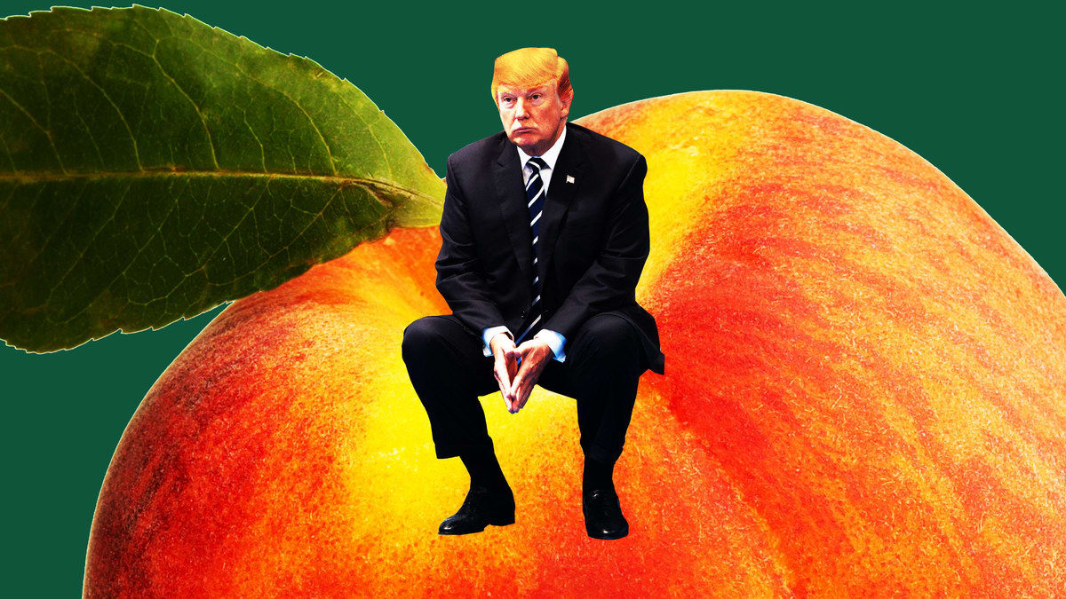 The Gop Senators Deliciously Awful Impeachment Dilemma