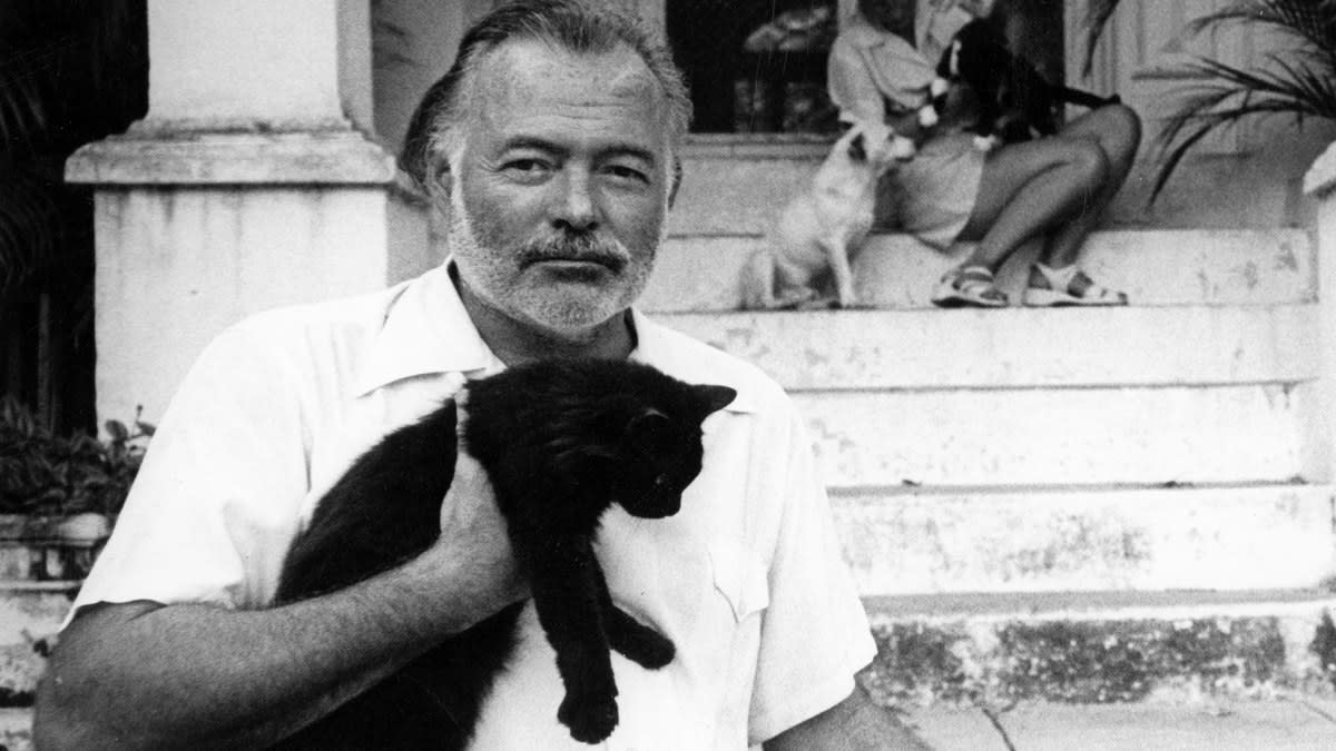 How to Tackle a Bullying, Alcoholic, Racist Named Hemingway