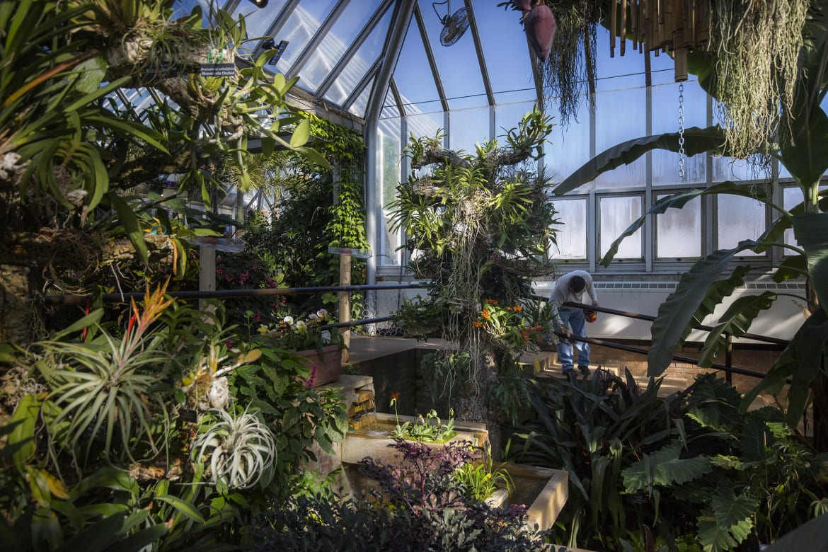 ... Rail Inside One Of The Many Greenhouse Rooms During The Preparation For  The Opening Of Asia In Bloom, Feb. 8, 2018. The Chicago Botanic Garden Has  Been ...