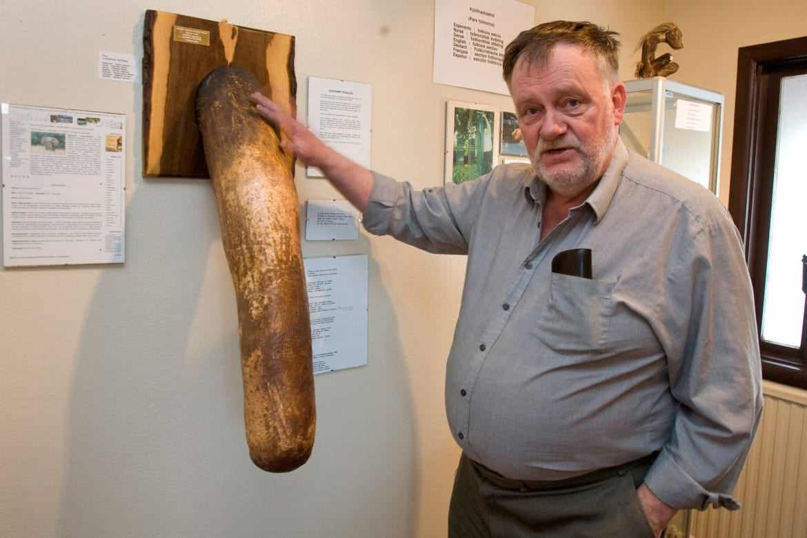 largest penis in the world human