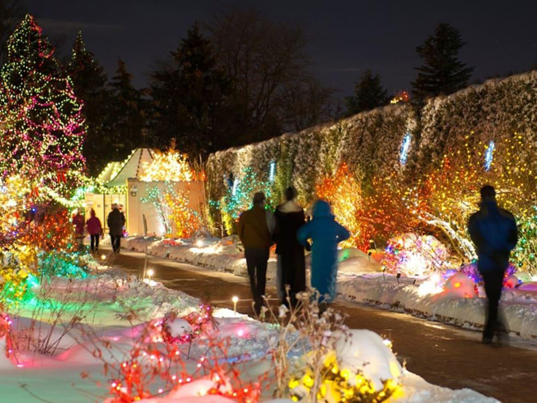 Denver Botanic Gardens Lights – Greenfain