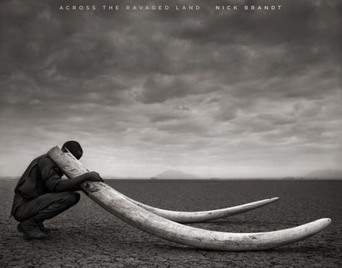 26 best coffee table books of 2013 across the ravaged land geotapseo Choice Image