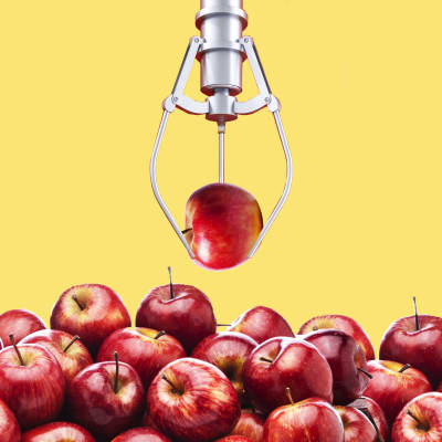 illustration of a robotic arm holding a red apple above a bin of red apples new zealand
